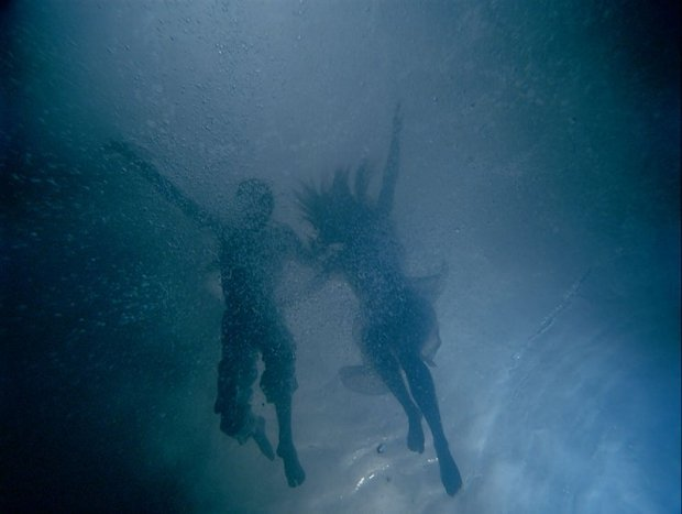 Bill Viola, The Fall into Paradise (2005)